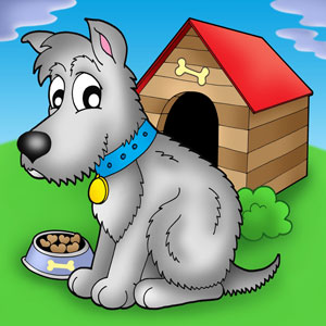 gray puppy sitting in front of its kennel